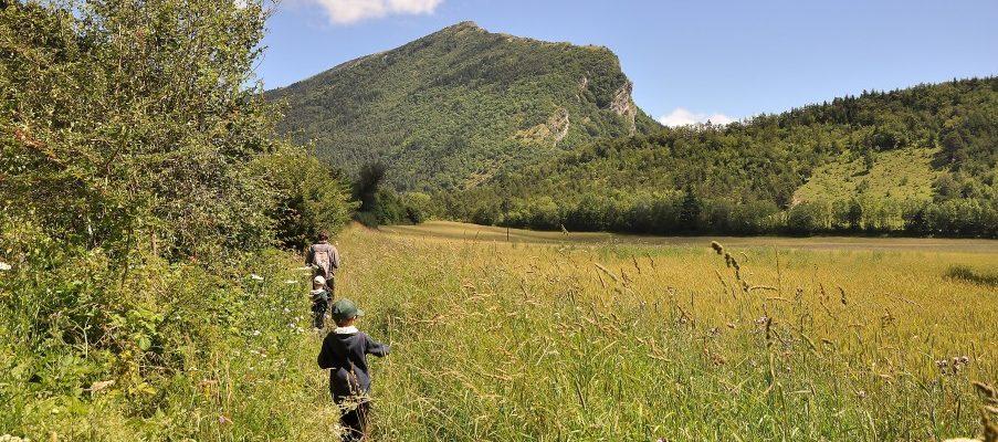 Roulotte, balade avec un ane, cabanes, Mont Aiguille : riche Trieves !